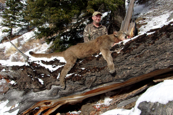 2018-slide-mountain-mountain-lion-hunt-idaho003E401C-7CB9-6019-3132-A08D944F7A06.png